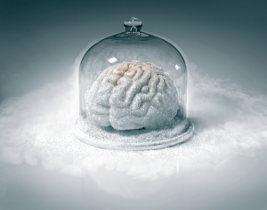 Frozen Brain, by Iivio Ansaldi
