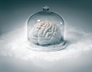 Frozen Brain, by Iivio Ansaldi