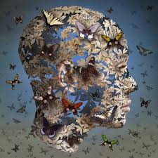 Butterflies by Igor Morski